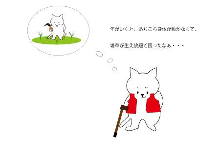年寄り猫のつぶやき