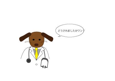 犬のお医者さん